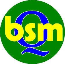 Noleggio BSM BRESCIA MACCHINE SRL