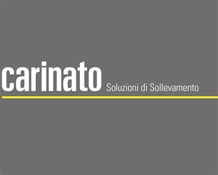 Noleggio CARINATO AUTOGRU SRL